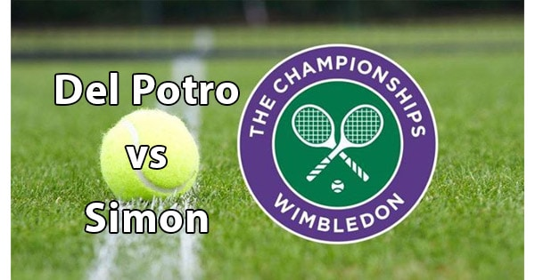 Streaming Del Potro Simon