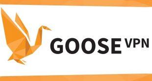 Avis Goose VPN
