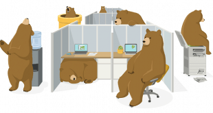 appareils supportes tunnelbear
